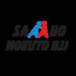 Sambo Hokuto BJJ